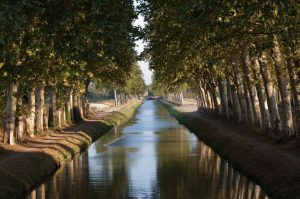 Tree lined canal. Image shot 09/2010. Exact date unknown.